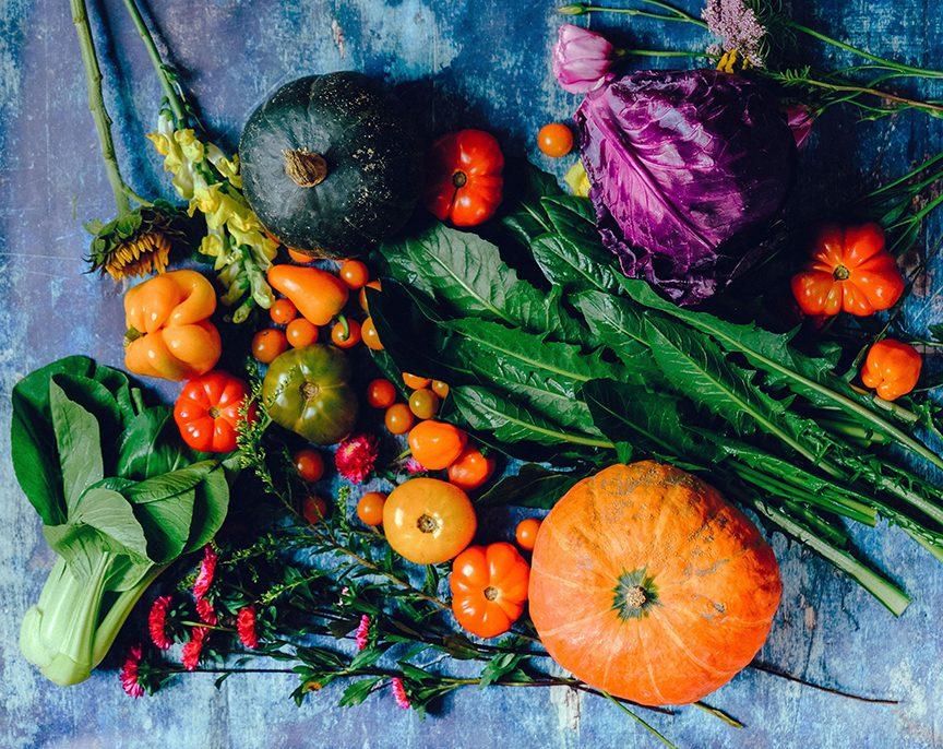 Freshly Harvested Produce